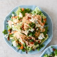 buffalochickensalad-1-2