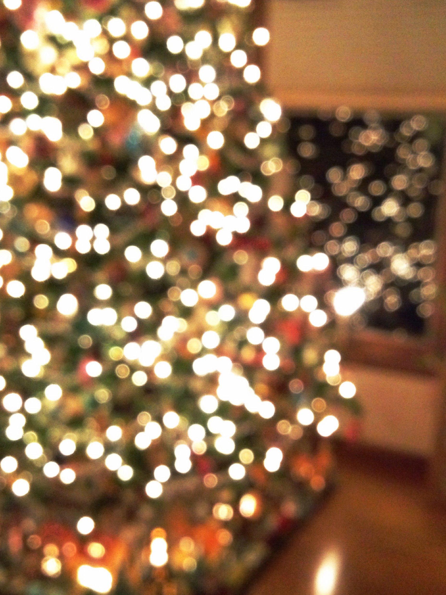 merry christmas! I howsweeteats.com