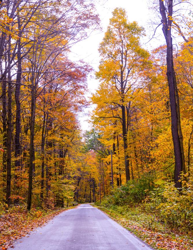 a little autumn drive I howsweeteats.com