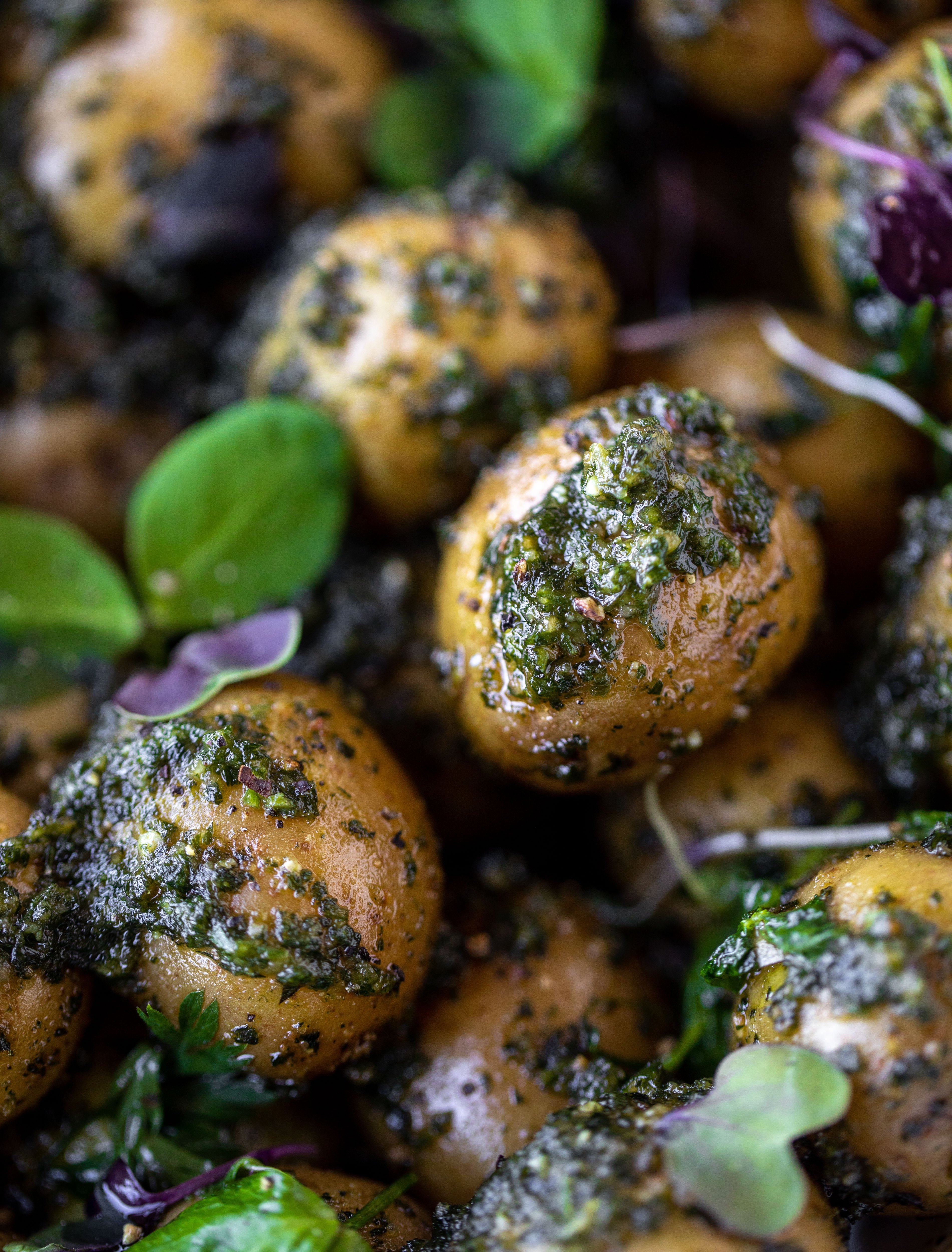 This pesto potato salad is made with carrot top pesto for the perfect spring side dish! Baby potatoes, pesto and greens make up this delish bowl.