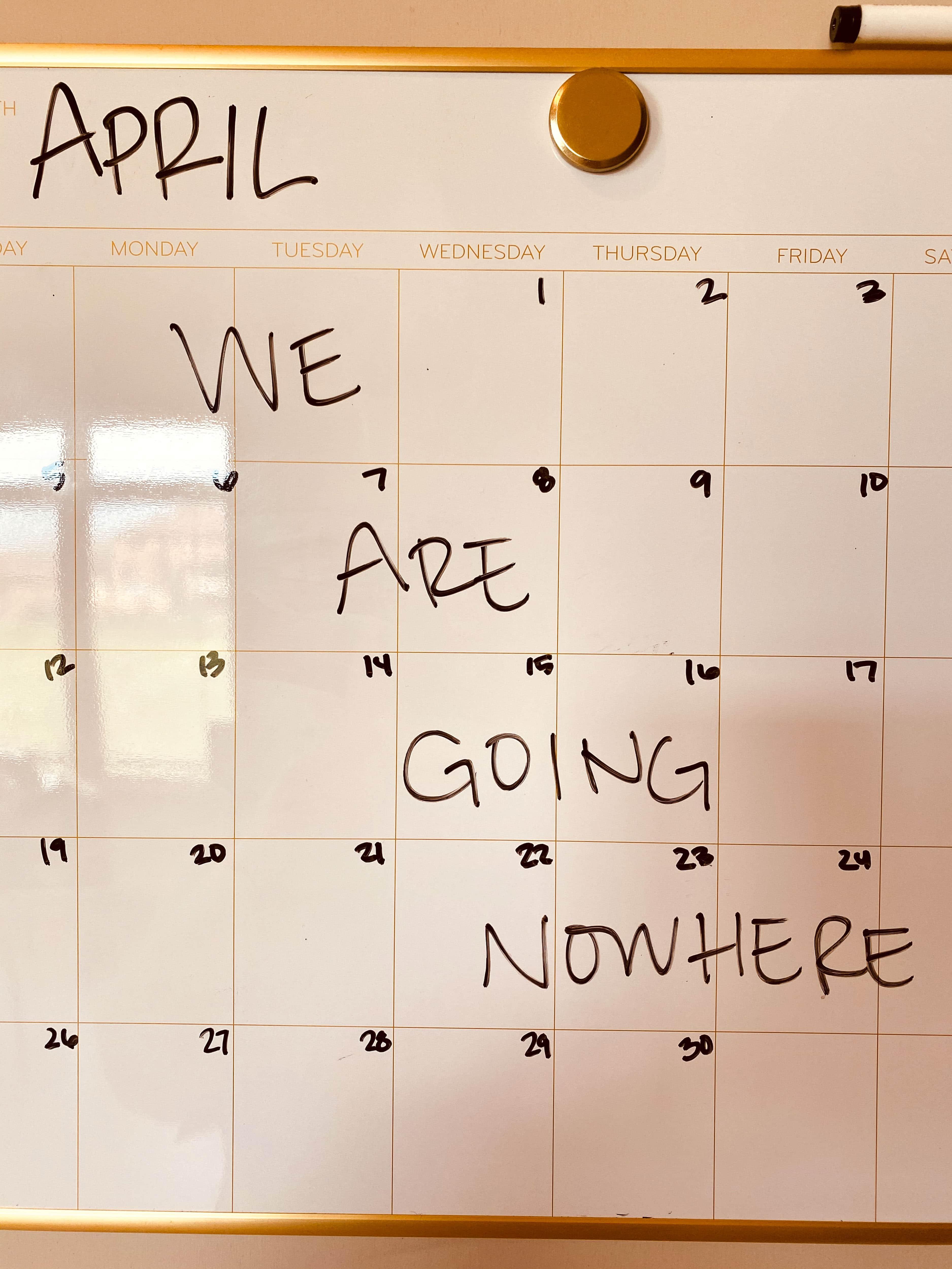 a week in the life, week 14