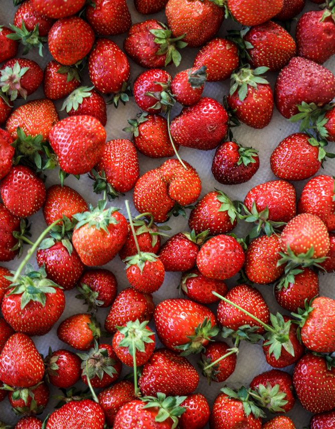 fresh strawberry cobbler I howsweeteats.com