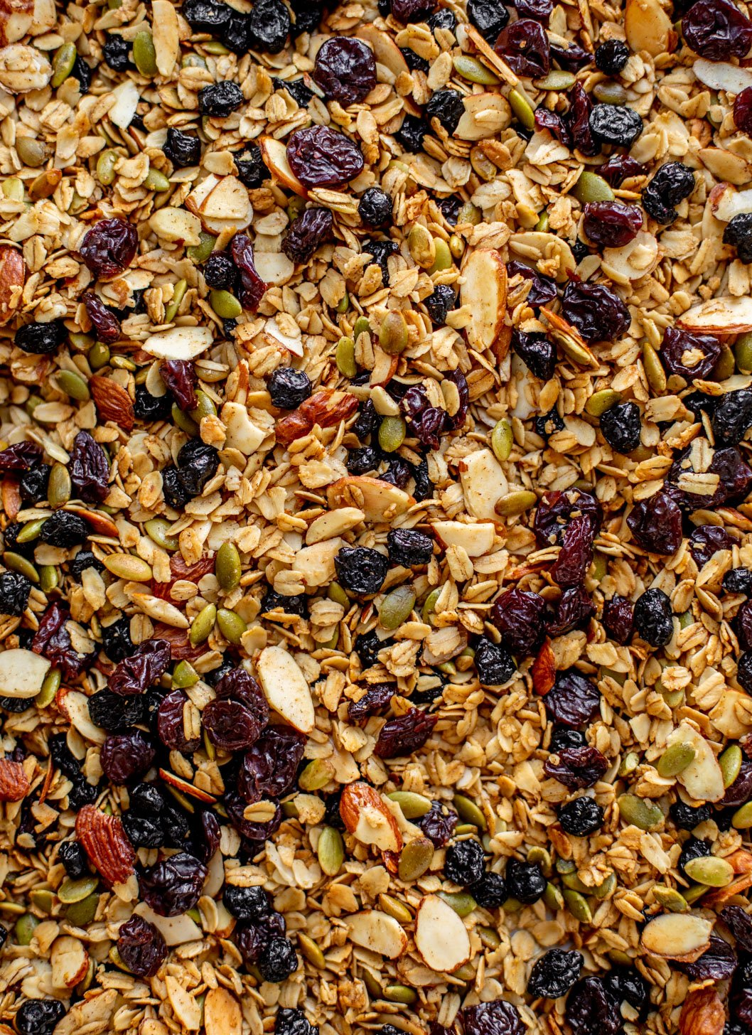 salted maple granola with dried cherries and blueberries