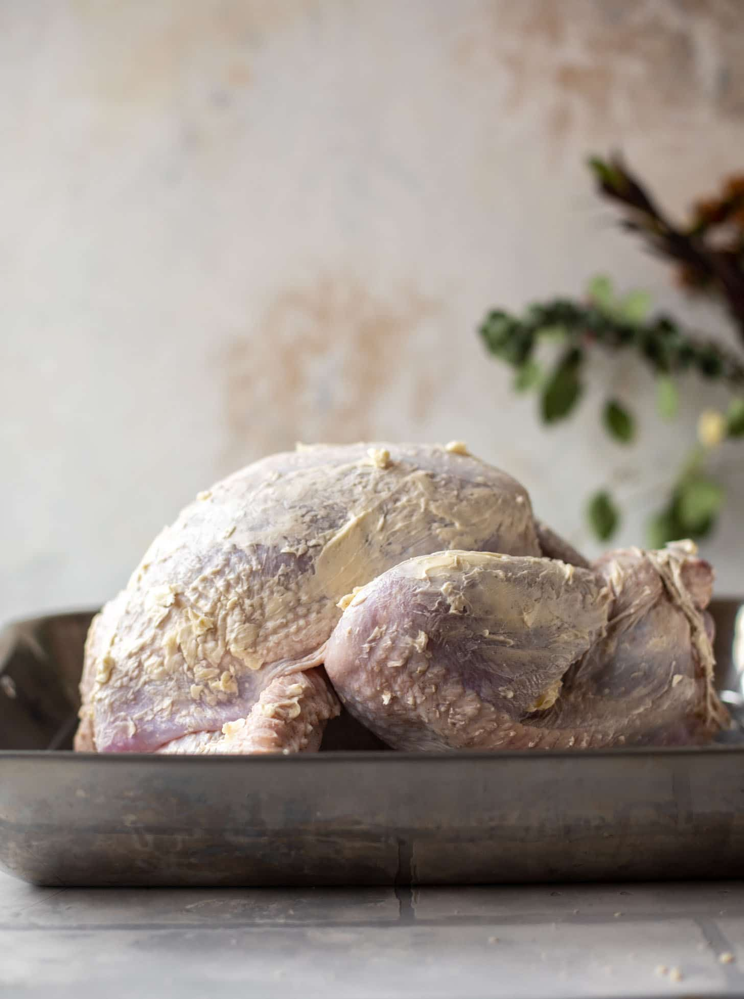 turkey rubbed with butter in a roasting pan