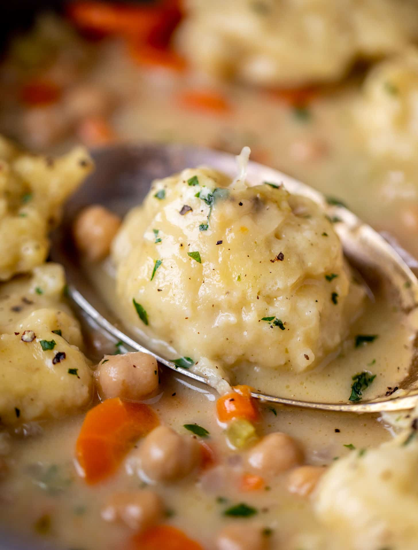 close up of chickpeas and dumplings